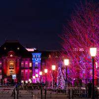 美しく幻想的な灯りに包まれよう。冬を彩る風物詩~東京のイルミネーション5選~