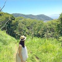 半日旅行へ出かけよう!風と光と水が心地いい【葉山】へ山ハイキング