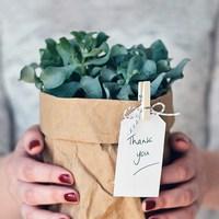 もらって嬉しい、グリーンの贈り物を作ろう♪ショップ&ギフトアレンジ術をご案内