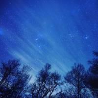 """澄んだ空に輝く無数の光。""""星空""""が望める関東近郊の夜景スポット☆"""