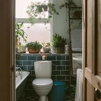 年末前に徹底的にトイレをきれいに!掃除をしていい運を招き入れよう