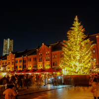 美しい光に誘われて、一足早くクリスマス気分♪横浜周辺のおすすめイルミネーション7選