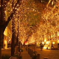 【都内】クリスマスのわくわくが高まる♪≪無料・自由参加≫のおすすめイベント