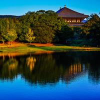 おなじみ「奈良の大仏さま」を見に行きませんか?~奈良県 東大寺のみどころ~