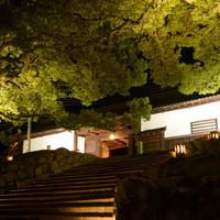 和の佇まいと灯りが織りなす美しさに魅せられて ~京都・東山花灯路のみどころ~