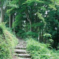 【奈良県】薬草と清々しい美しさに触れる癒しの旅