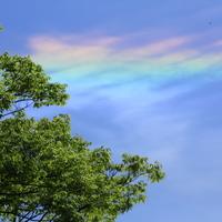 見つけたらいいことあるかも* 虹色に染まる美しい雲「彩雲」を探してみよう