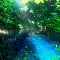 吸い込まれるような美しさ。世界遺産・白神山地の神秘の池【青池】