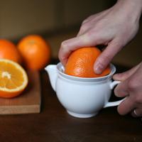 搾りたての果汁を毎日の食卓に。シンプルで機能的な『東屋』のジューサー