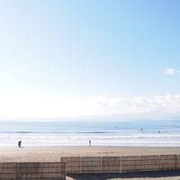 静かな海、紅葉、江ノ島のイルミネーション。「湘南・鎌倉エリア」秋冬散策のおすすめ