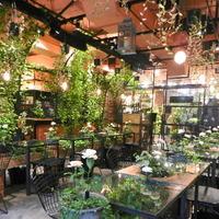 東京にも自然がいっぱい♪グリーンに癒されるカフェ8選