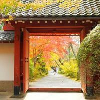 美しい京都の紅葉。混雑を避けたお寺巡りでゆっくりと楽しみたい!
