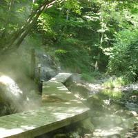 地球の息吹を感じる場所。宮城県・鬼首温泉「地獄谷遊歩道」