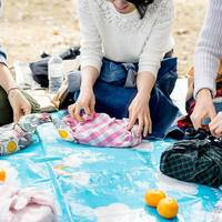 春を探しに行こう!「ピクニックの楽しみ方」アイデア集
