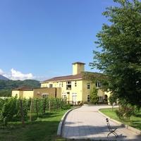 素敵な景色が広がる〈長野・サンクゼールの丘〉で美味しいランチとワインをどうぞ♪