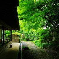 鎌倉が気持ちいい季節!とっておきの鎌倉散策コース教えます♪