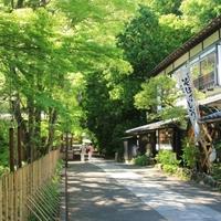 大人の穴場散歩「深大寺」。美味しい蕎麦屋に鬼太郎茶屋、日帰り温泉も!