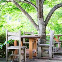 季節ごとに訪れたい*森のレストラン「奈良・ラッキーガーデン」がとっても素敵♪