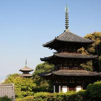 桜に牡丹。花を抱く歴史あるお寺 ~奈良県葛城市 當麻寺の見どころ~