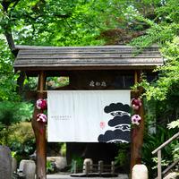 東京のど真ん中で森林浴!緑あふれる空間で美味しいお料理とスイーツを♪