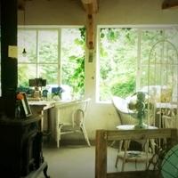 雄大な自然とアンティークなカフェが楽しめる♪<南阿蘇>を旅しよう!