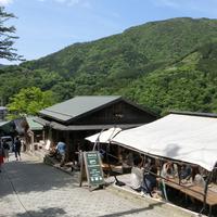 オススメ!秋の箱根ハイキングでふらっと立ち寄りたいカフェ&雑貨屋さん♪