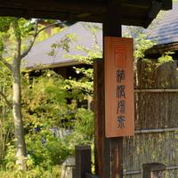 小田急ロマンスカーで週末旅♪《温泉・アート・グルメ》を堪能する箱根おすすめガイド