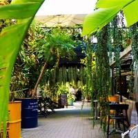 地球上の植物たちが大集合。「代々木ビレッジ 」の庭がすごい!