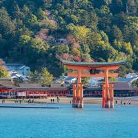 広島のおすすめ観光スポット6選◎地元県民の目線でまとめてみました