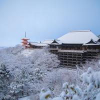 朝食からお土産まで盛りだくさん♪ 母娘で行く、冬の京都旅**