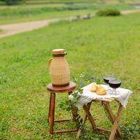 春らんまんの陽気に誘われて♪お天気がいい日は『ピクニック』に出かけよう!