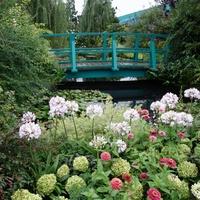 喧騒を逃れて、緑豊かなオアシスへ。東京都内にある「屋上庭園」6選