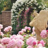 花やハーブに癒されて♡ 都内から日帰りで行ける神奈川県の素敵なガーデン6選