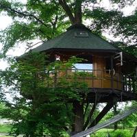 大自然を満喫できる♪森の中にあるホテルやカフェでゆったりとした時間を過ごしませんか?