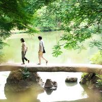 心安らぐひと時を。都内の美しい日本庭園と、カフェを巡る一日