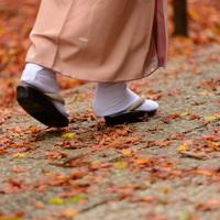 レンタルもあるよ♪  着物で周る、京都の紅葉巡り1日モデルプラン