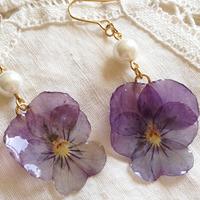 美しさ、可愛らしさをいつまでも*【押し花】の作り方をまとめたよ♪