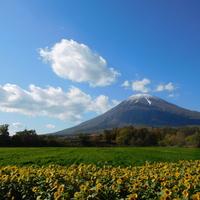 【北海道】日本で最も美しい村 ~京極町・清里町~編