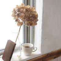 お部屋がぐっとナチュラルに♪ちいさく可憐な花「あじさい」のドライフラワーを飾ろう