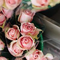 好きな人もそうでない人も。毎日の生活に取り入れたい「ピンク色」の不思議な力