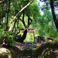 """緑の丘とキャンパスと。気ままに歩く""""わたしの京都旅"""""""