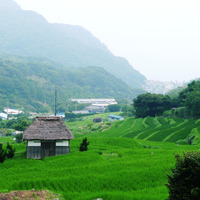 【東海地方】日本で最も美しい村 ~静岡県松崎町編~