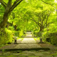 歩いて、立ち止まって、思いを馳せて。日本国内【歩く旅】おすすめルート3選