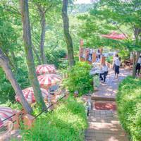 """半日旅行へ出かけよう!""""鎌倉""""の自然(森/庭/海)に触れるカフェ・レストラン7選"""
