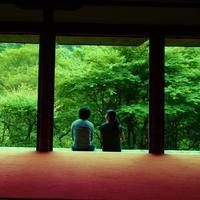 """深緑も。清流も。世界遺産も。三尾を訪ねる""""わたしの京都旅"""""""