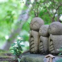 いいことあるかも…♪ 自然いっぱいの鎌倉でのんびりご利益巡り