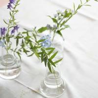 さりげなくシンプルに。ガラスの花器や草花アレンジで、夏のインテリアに涼しさを演出して