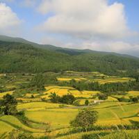 【四国地方】日本で最も美しい村  ~愛媛県上島町・高知県馬路村・高知県本山町編~