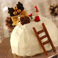 今年は手作りに挑戦♪【クリスマスケーキ】のデコレーションアイデア