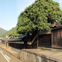 【中国地方】日本で最も美しい村  ~鳥取県智頭町編~